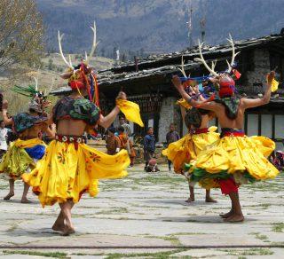 Takin Festival